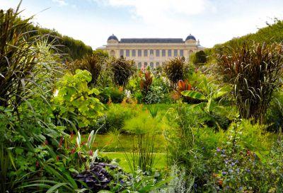 Jardin des Plantes © MNHN - Jérôme Munier