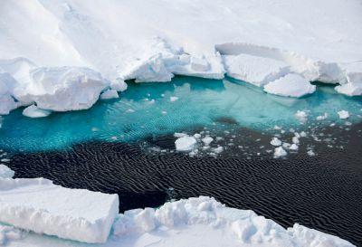 Mers australes - Antarctique © MNHN - Sophie Mouge